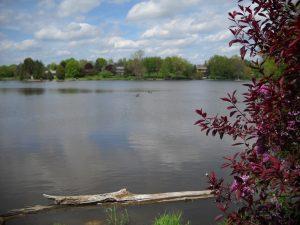 Neosho Lake 2